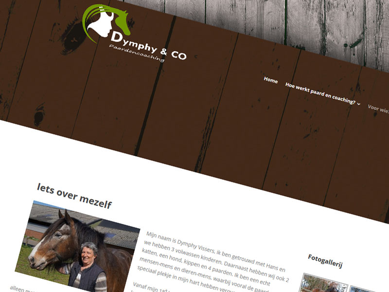 Dymphy & Co Paardencoaching uit Someren